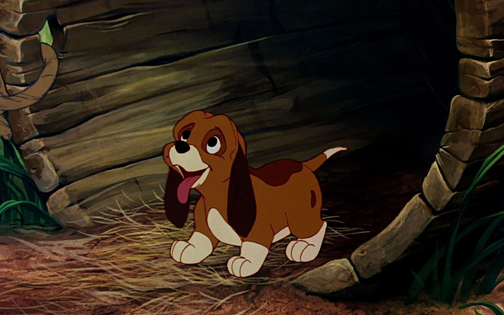 Cartoon The Fox And The Hound Wallpaper The Fox And The Hound