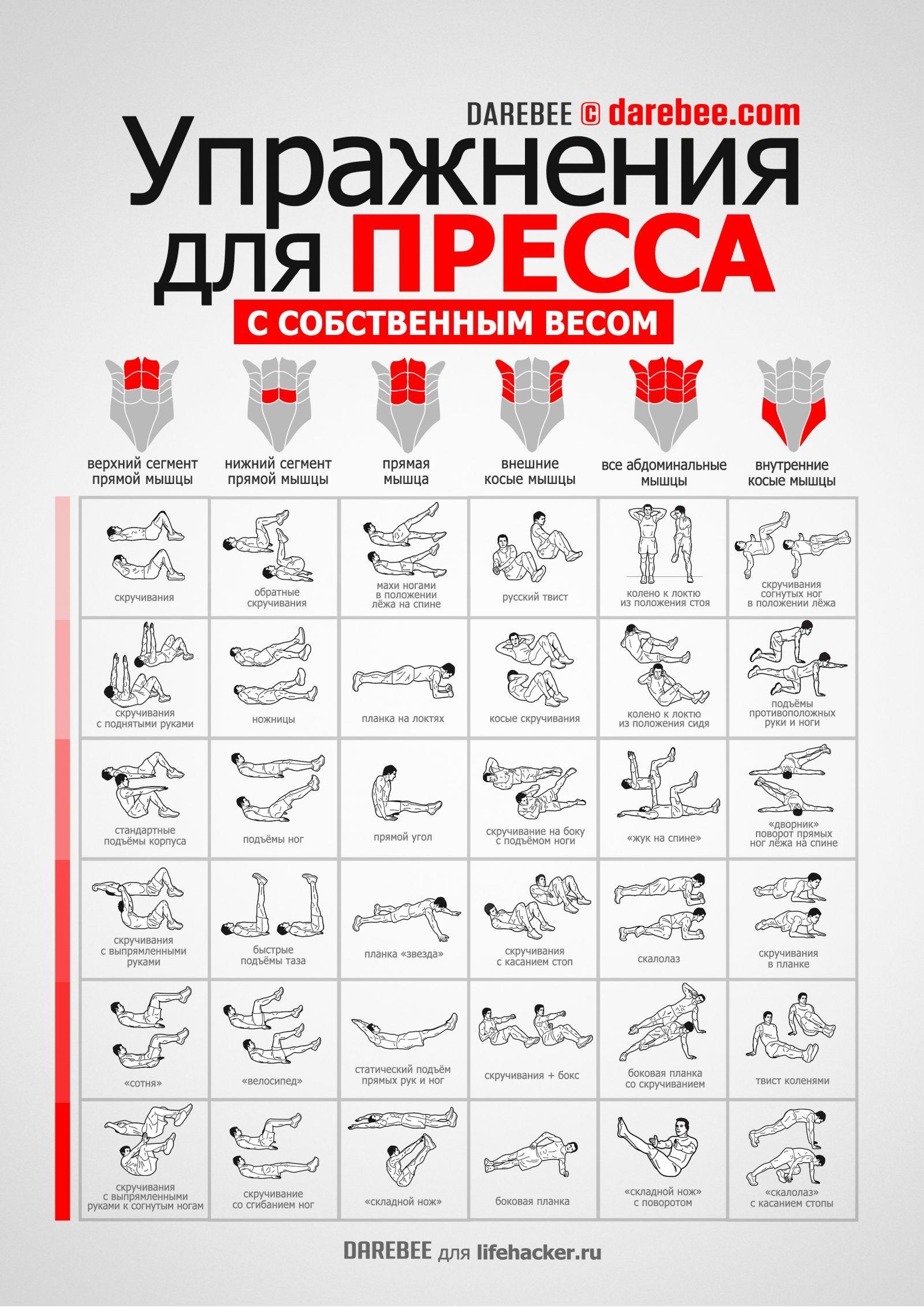 упражнения для рук и пресса в картинках все-таки очки