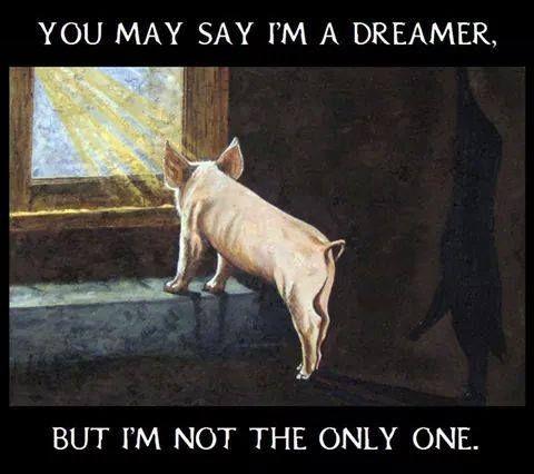 You may say i´m a dreamer but i´m not the only one.