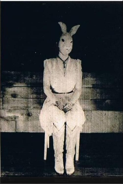 Collection Scary Easter Bunny Pictures Pictures - The Miracle of ...