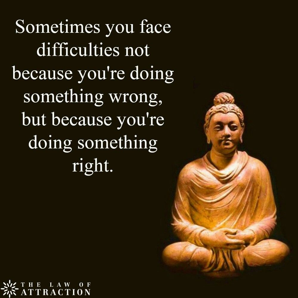 Pin by Anita Khan on Words of wisdom | Buddha quotes ...
