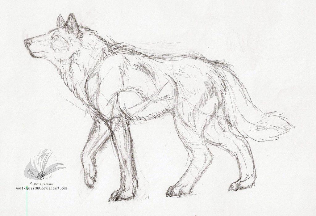 Photo of Wolf Spirit Lineart Sketch by Wolf-Spirit89 on DeviantArt