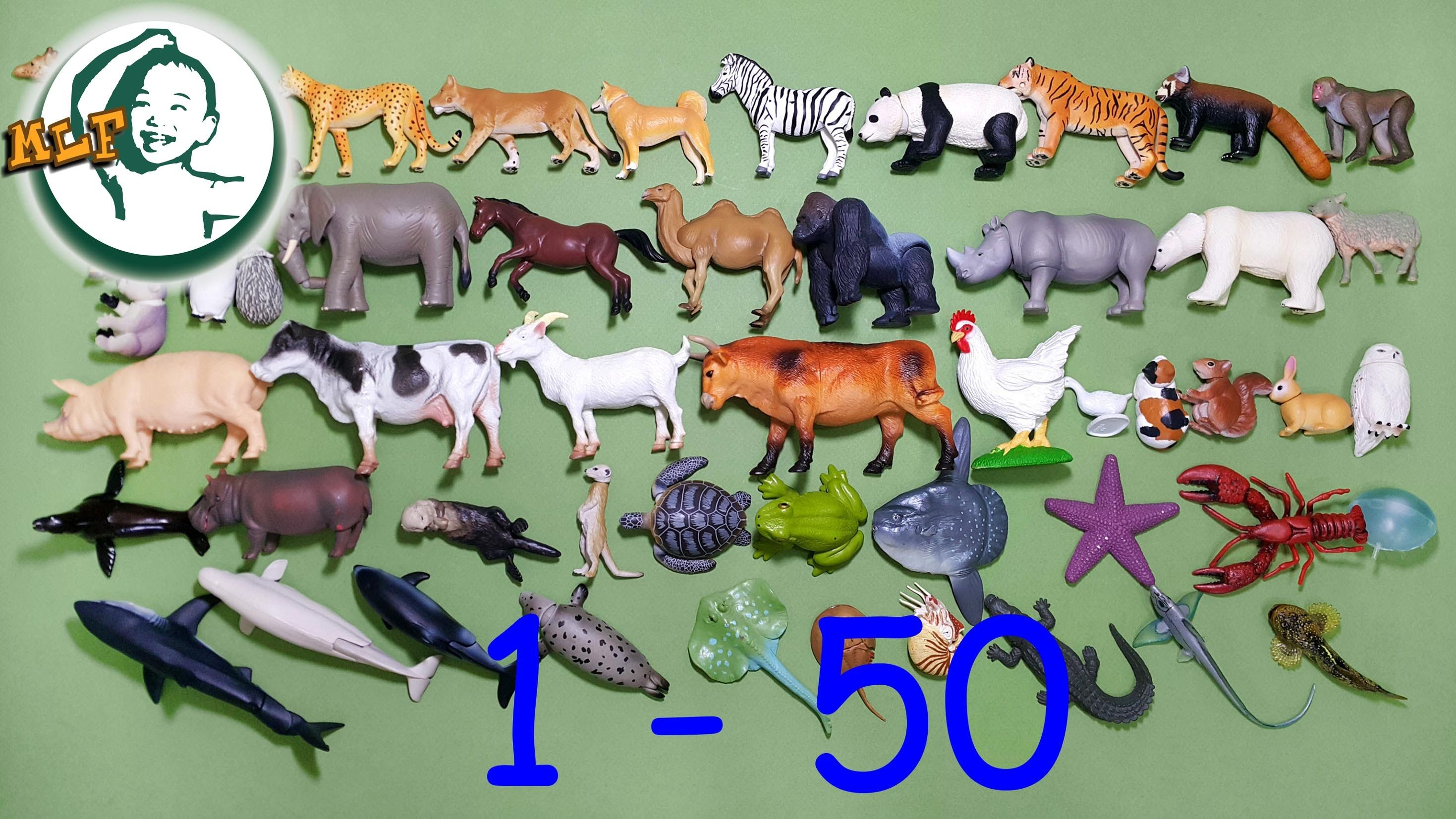 Learn To Count To 50 With Tomy Zoo Animal