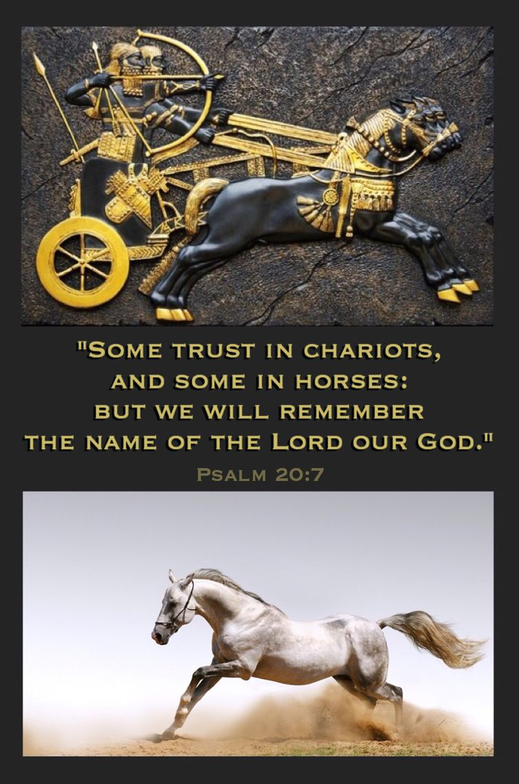 """Psalm 20:7 KJV """"Some trust in chariots, and some in horses: but we will remember the name of the Lord our God.""""  See also Psalm 33:17."""