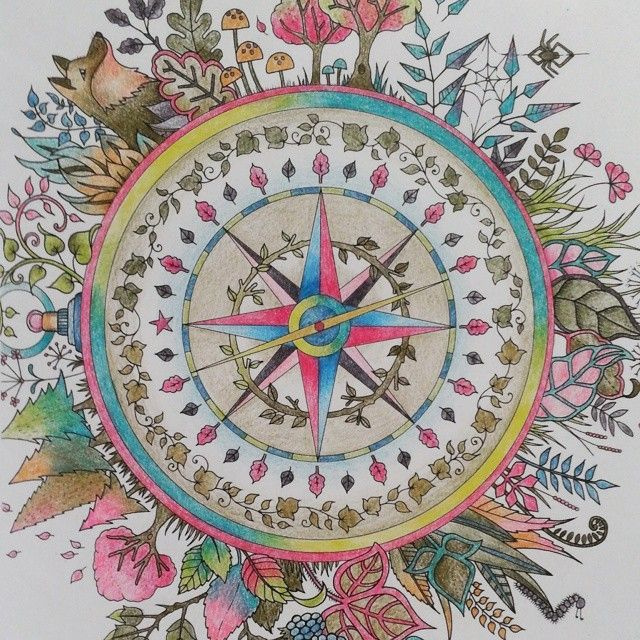 Johanna Basford Compass Colouring Enchanted Forest Maryland Forests Livros Roses