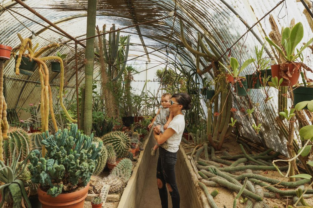 Sarah And Coco In The Cactarium At Moorten Botanical Garden With