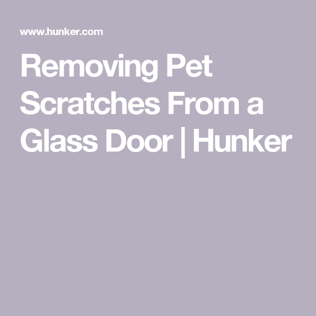 Removing Pet Scratches From A Glass Door Hunker Glass Door Glass Repair Glass