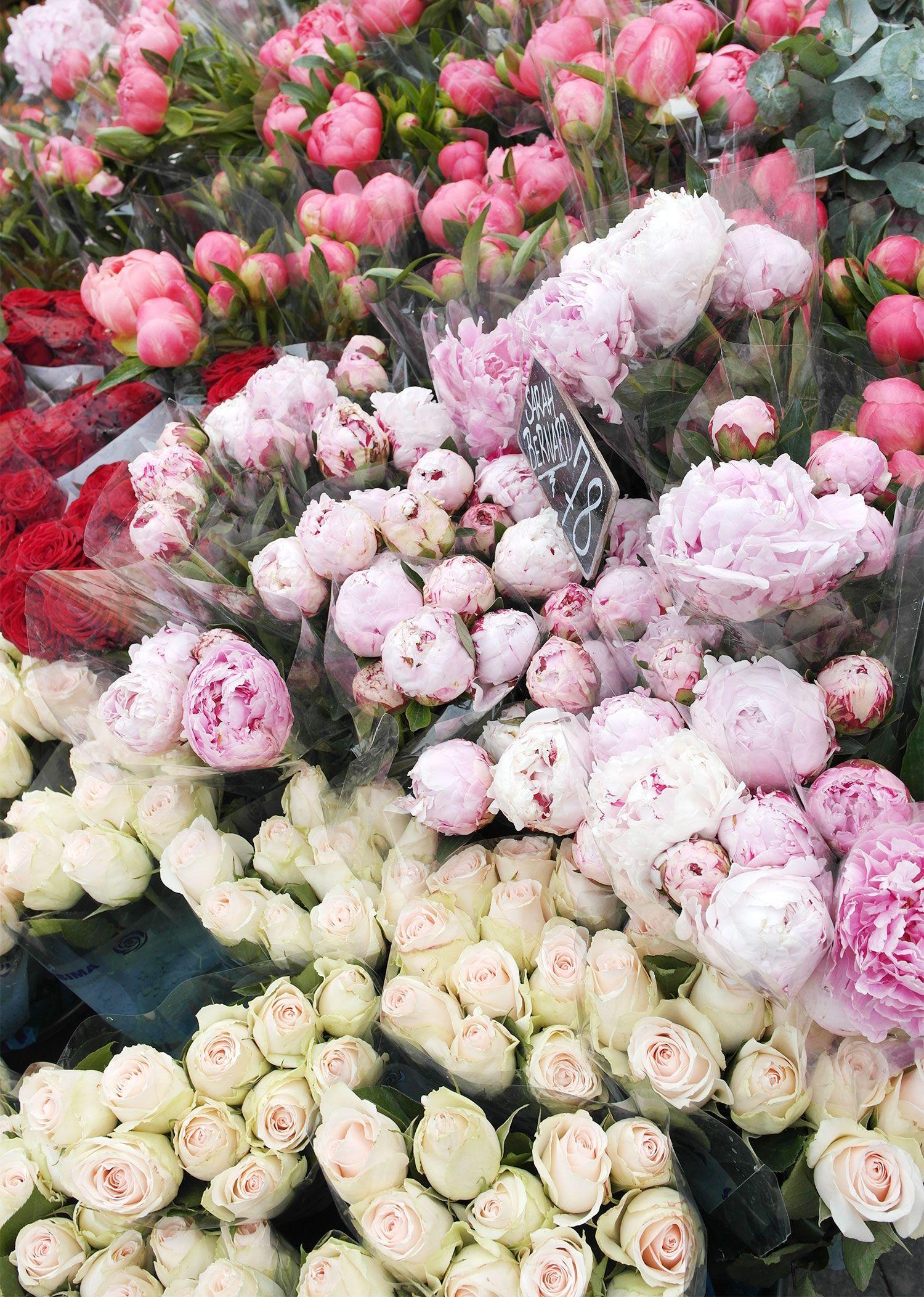 Man kan aldrig få for mange smukke blomster.