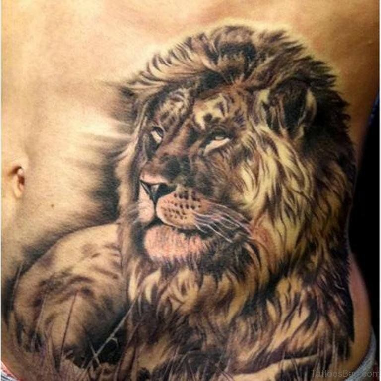 Awesome Lion Tattoo On Stomach Stomach Tat Pinterest