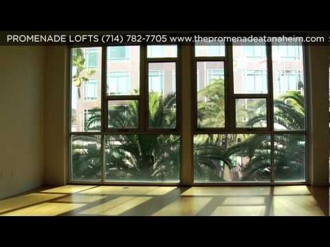 Promenade Loft Apartments Anaheim Apartment Southern California