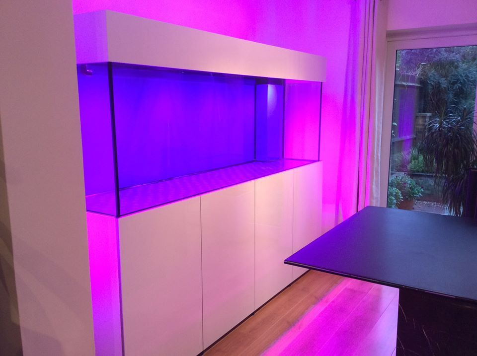 High Gloss White Marine Aquarium. | Modern aquariums | Pinterest ...