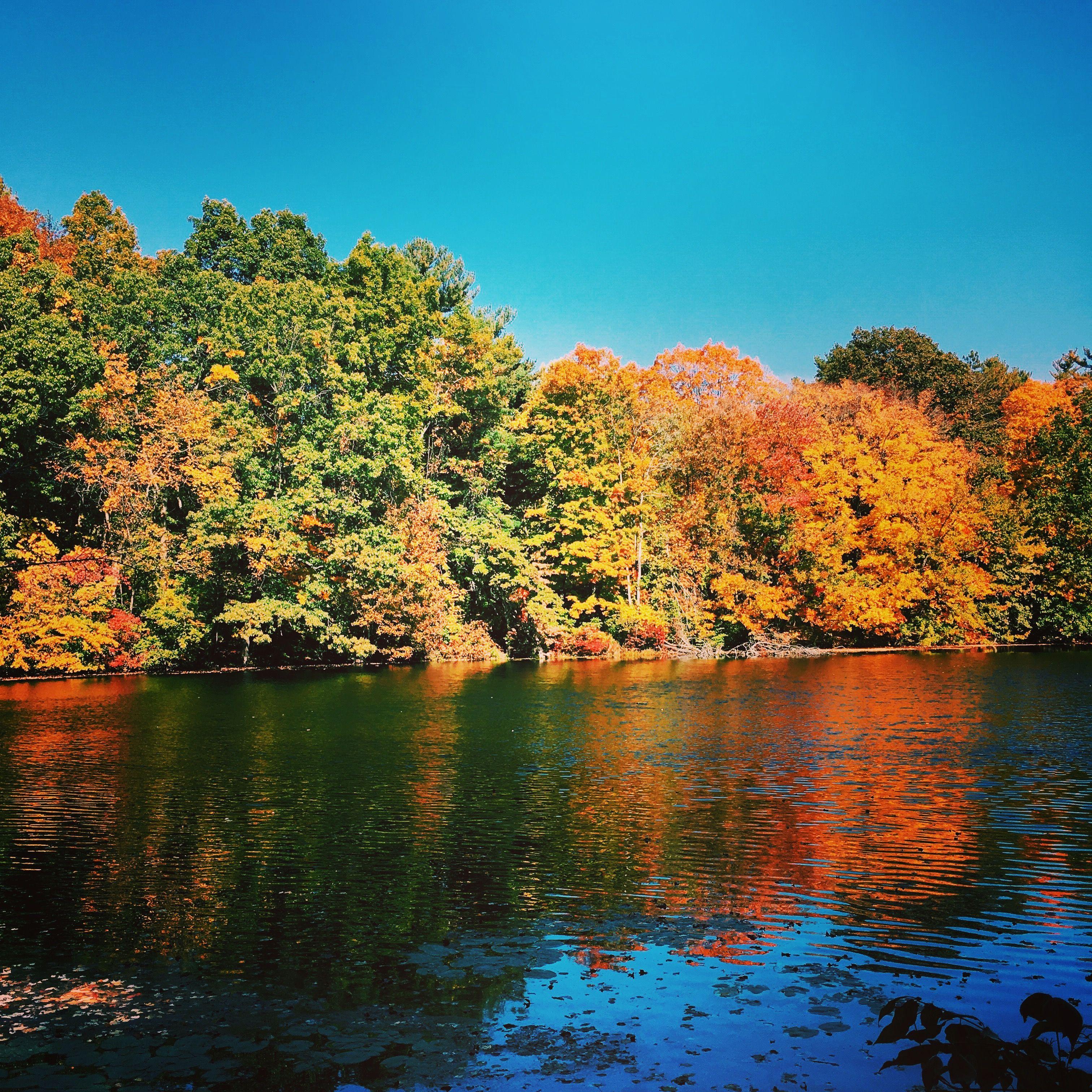 New England Autumn.