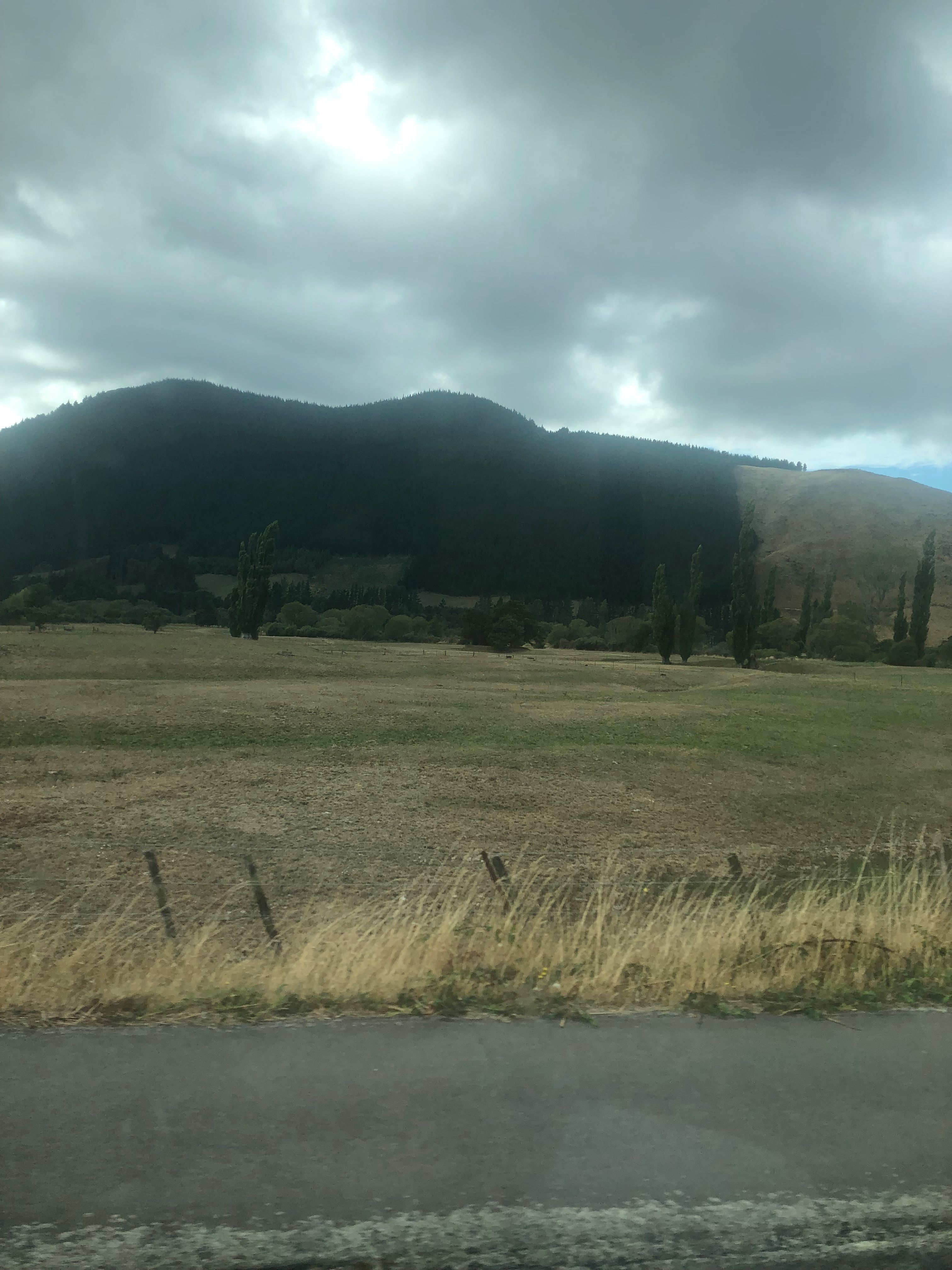 Rai Valley New Zealand Travel Trip Natural Landmarks