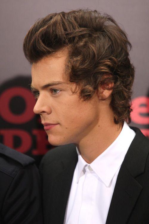 Harry Styles Profile Harry Styles Hair Harry Styles Hair Styles