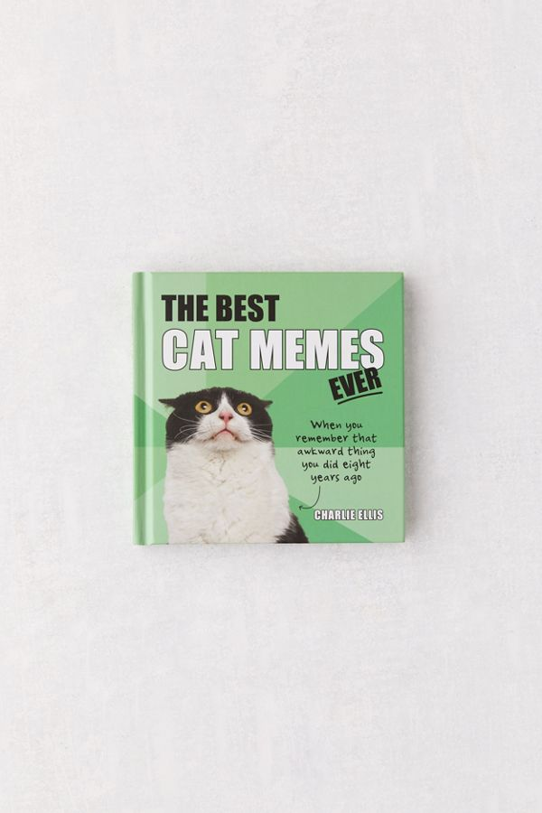 The Best Cat Memes Ever The Funniest Relatable Memes As Told By Cats By Charlie Ellis Best Cat Memes Cat Memes Cool Cats