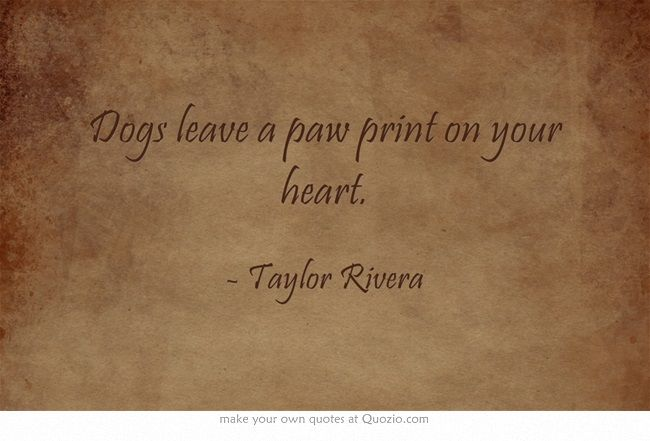 Dogs leave a paw print on your heart.