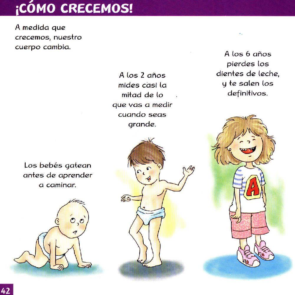 Nuestro cuerpo para niños primaria