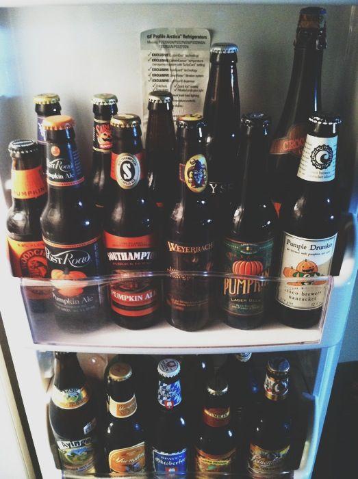 Good Stock Beer Fridge Pumpkin Beer Pumpkin Ale
