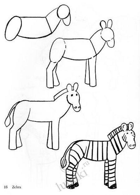Зебра схема рисования