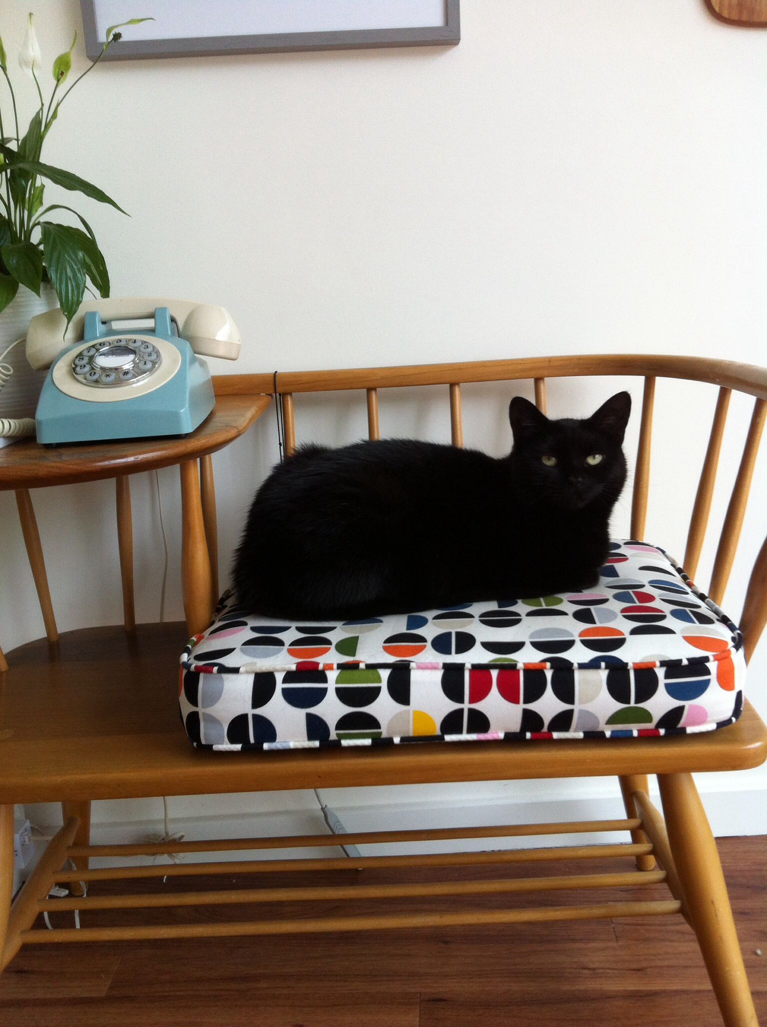 Chippy Heath telephone seat aka midcentury cat basket