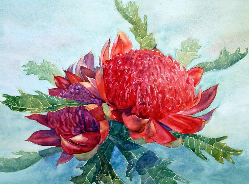 Watercolor Paintings Flowers Gallery Watercolour Flowers With