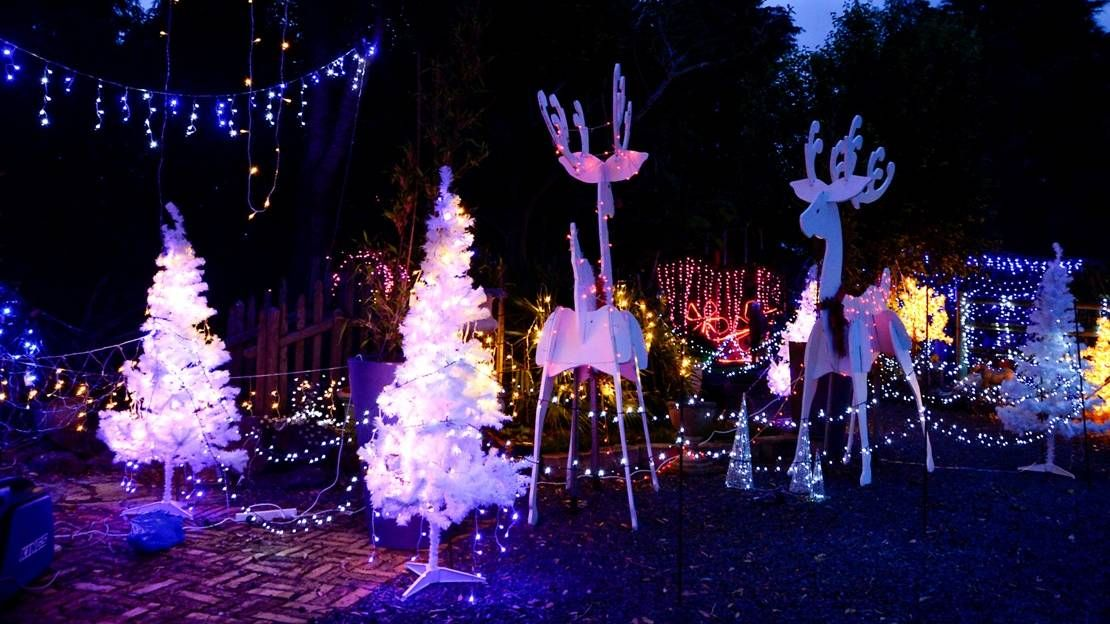 best solar christmas lights outdoor - Best Solar Christmas Lights Reviews Best Solar Christmas Lights