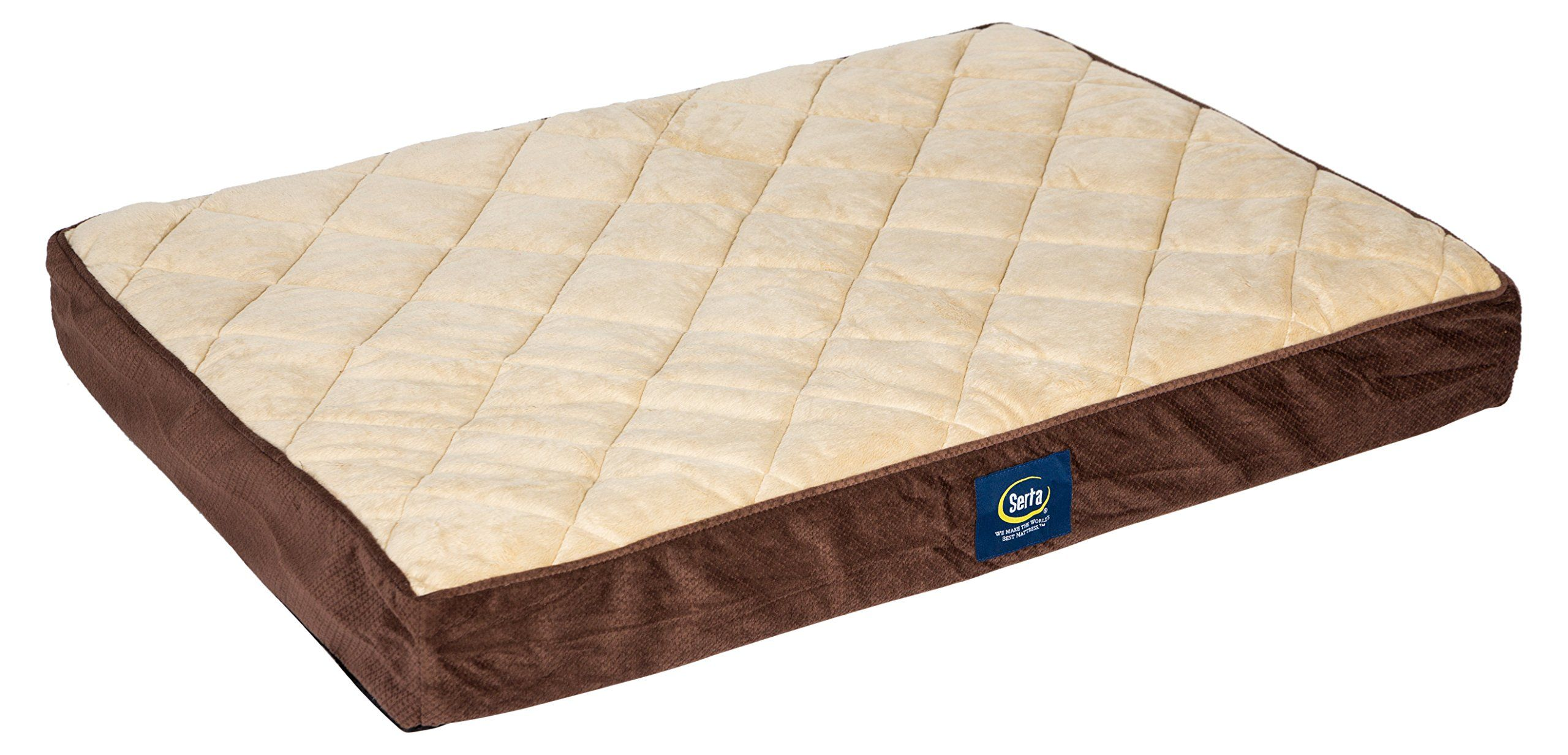 Serta Ortho Quilted Pillowtop Pet Bed Large Mocha ** Read