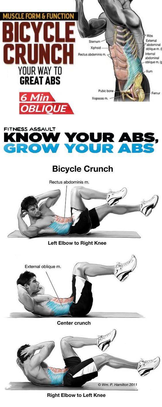 Bicycle Crunch Bicycle Crunches Core Training Exercises Workout Guide