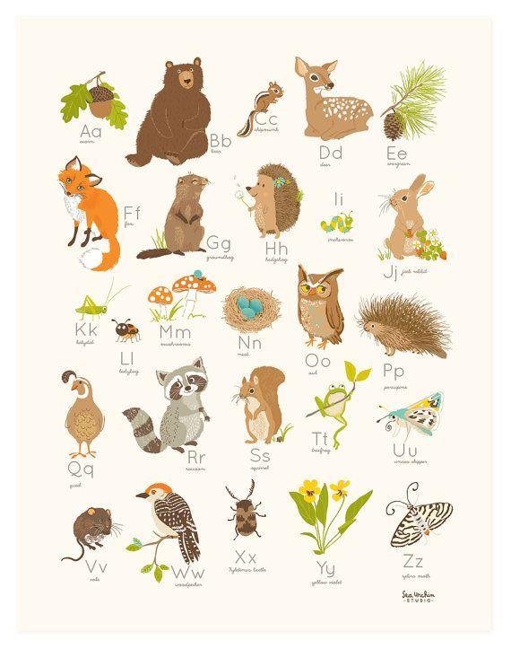 ALPHABET WALL ART Woodland Forest Alphabet Abc By SeaUrchinStudio, $20.00 Part 77