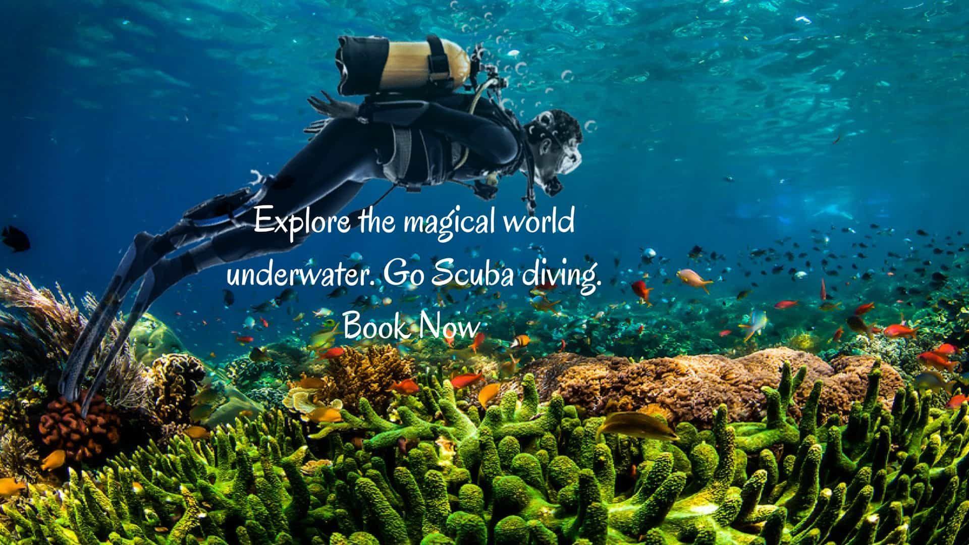 Water Sports in Goa Adventure Water Sports Activities in