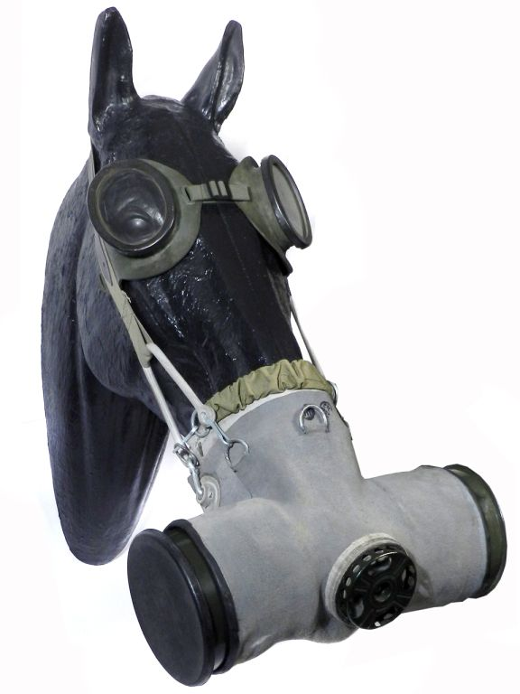 Horse Gas Mask I Think Flashman Would Love This Gas Mask Gas Mask