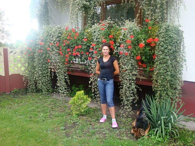 Zdjecie Nr 1 W Galerii Kwiaty Bronowice Capri Pants Doms