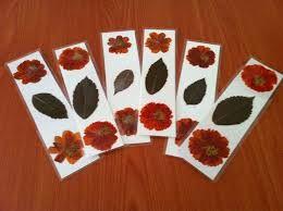Resultado de imagen de manualidades flores prensadas