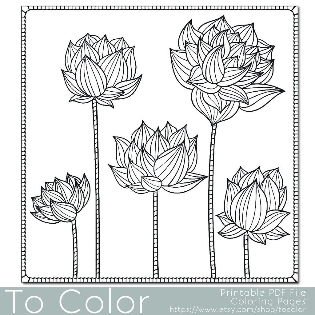 floral lotus flower coloring page for adults zentangle
