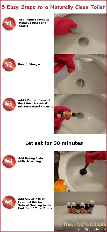 5 Steps To A Naturally Clean Toilet Recipe Toilet Cleaning