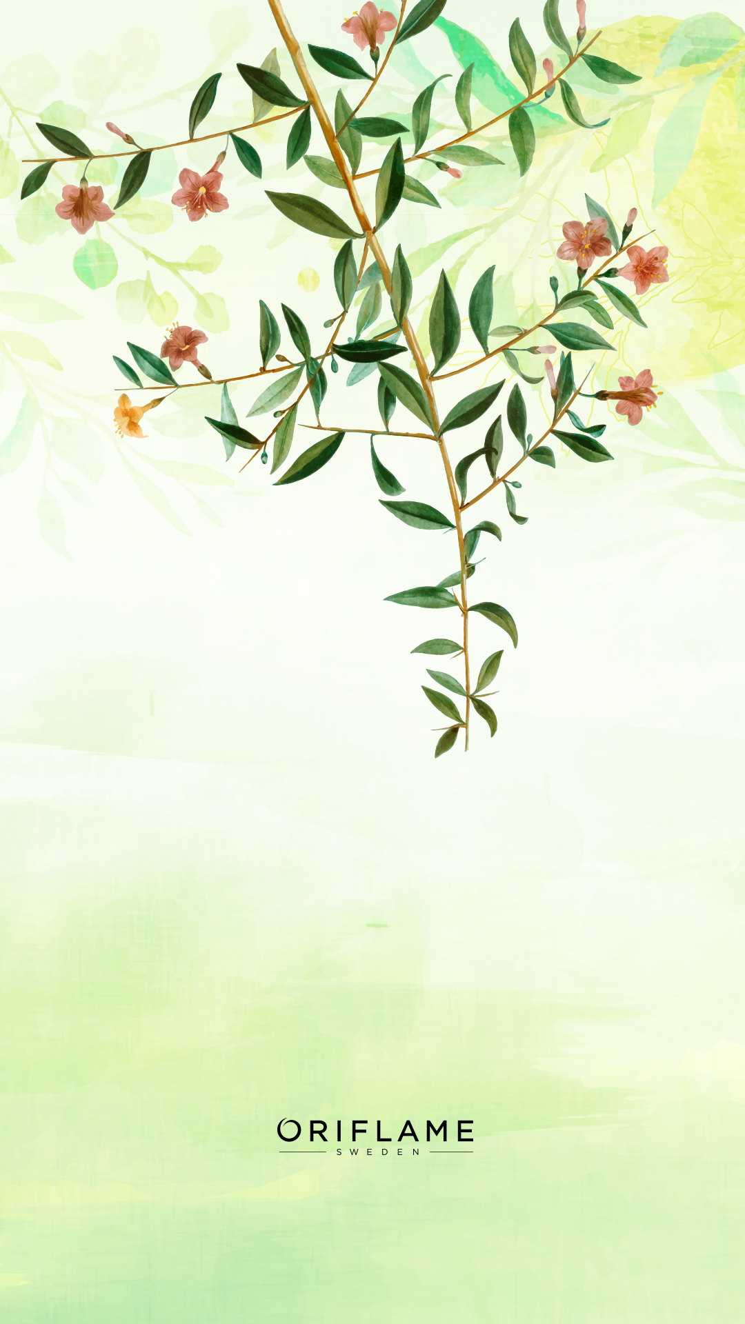 Logo Oriflame Png : oriflame, Backgrounds, #oriflameOriflame, Instagram, Wallpaper,, Background,, Flower