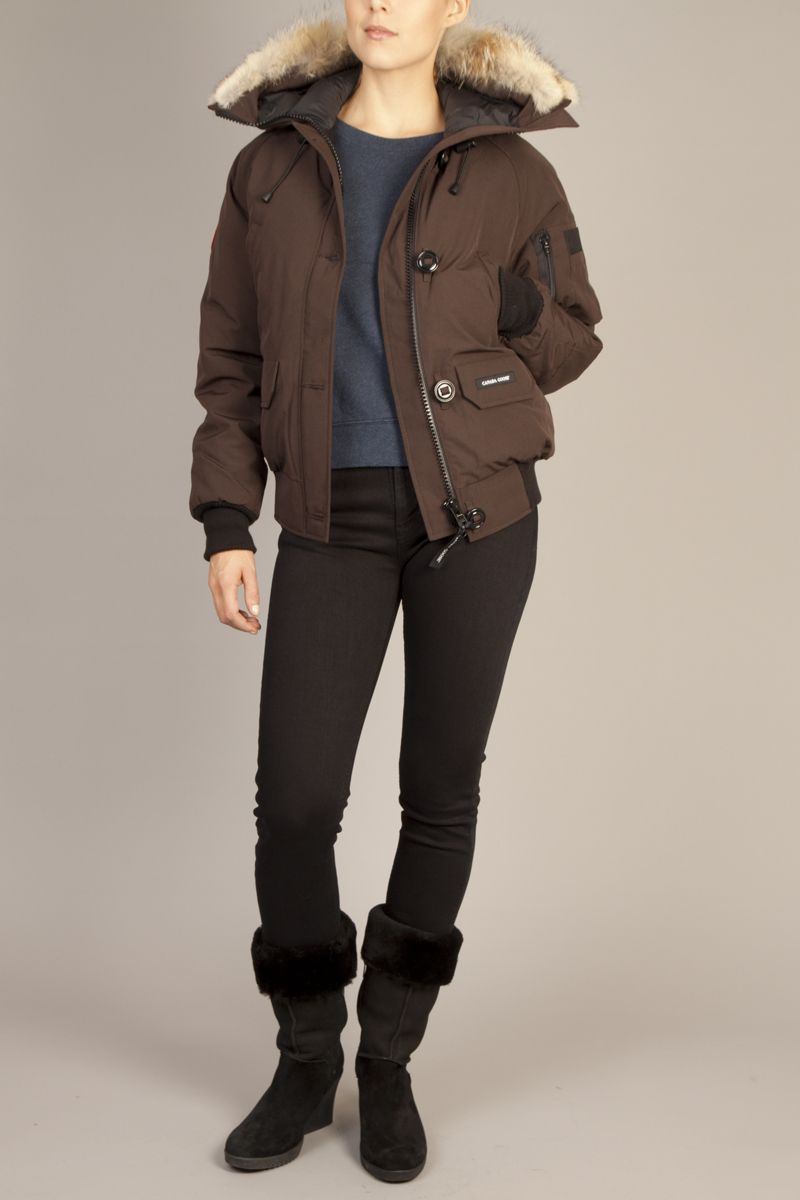 75c4ec11ce4 CANADA GOOSE chilliwack bomber in Caribou - available now at  dwndclothing.com!!