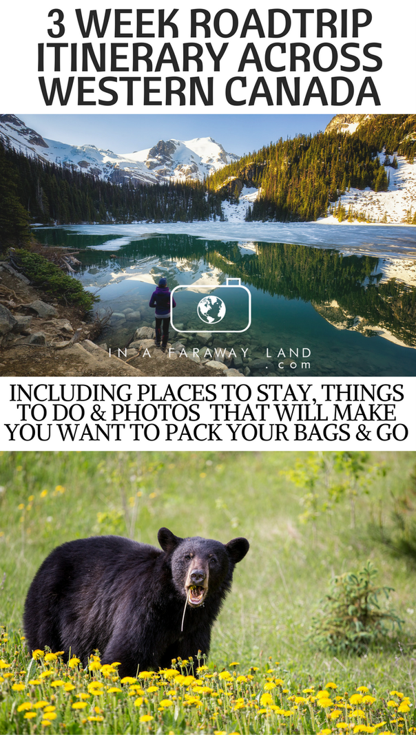 Vancouver Canadian Rockies Vancouver Road Trip Plan Canada Reizen Reizen Vakanties