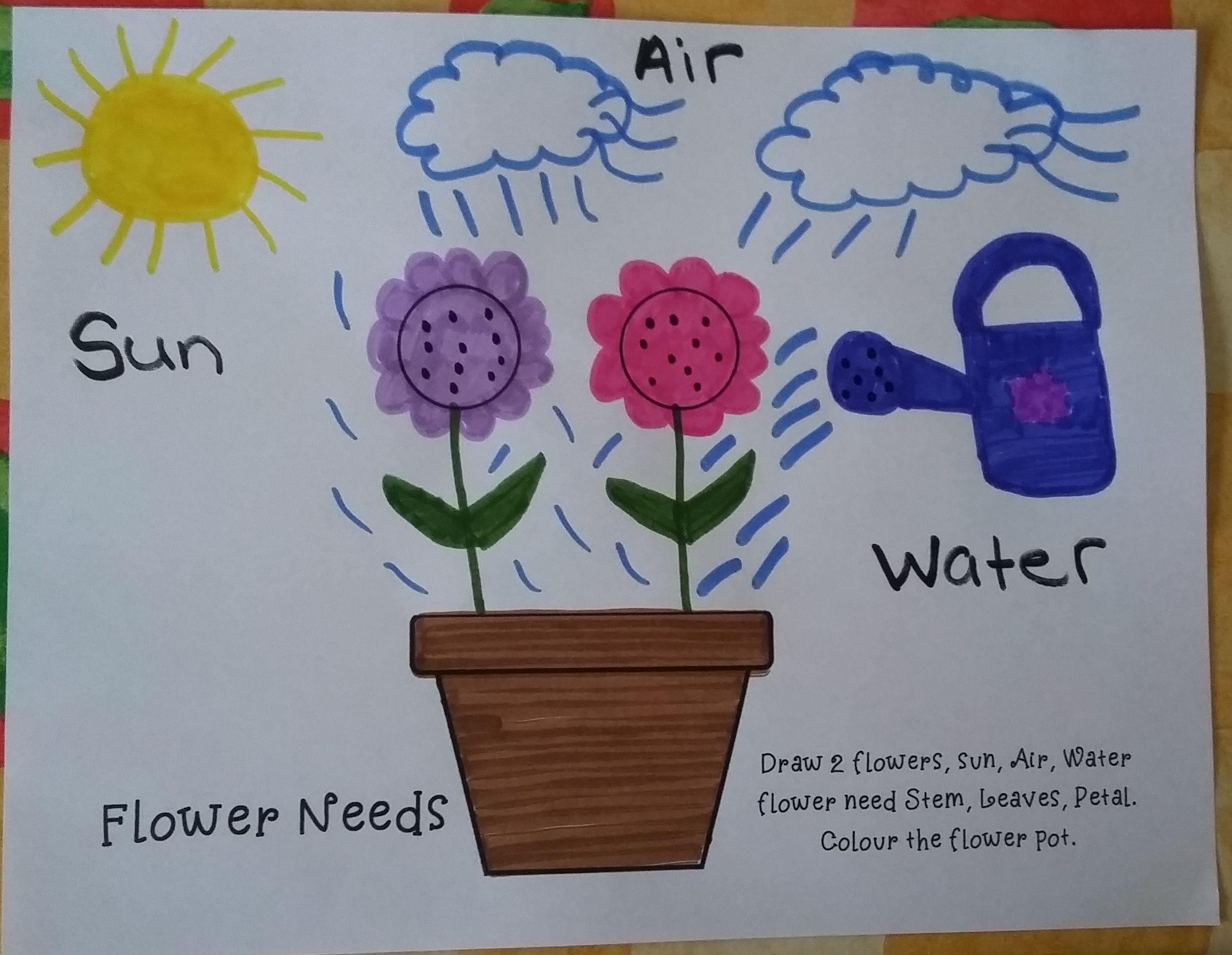 Flower Needs Kindergarten Petal Up Teacher [ 1719 x 2217 Pixel ]
