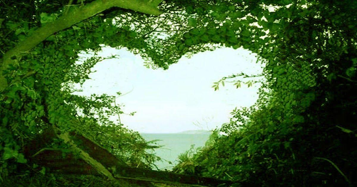 14 Amazing Nature Hd Wallpaper Download Beautiful Love Nature Wallpaper Hd Desktop Wallpapers Love Happy In 2020 Nature Wallpaper Nature Images Hd Nature Wallpapers