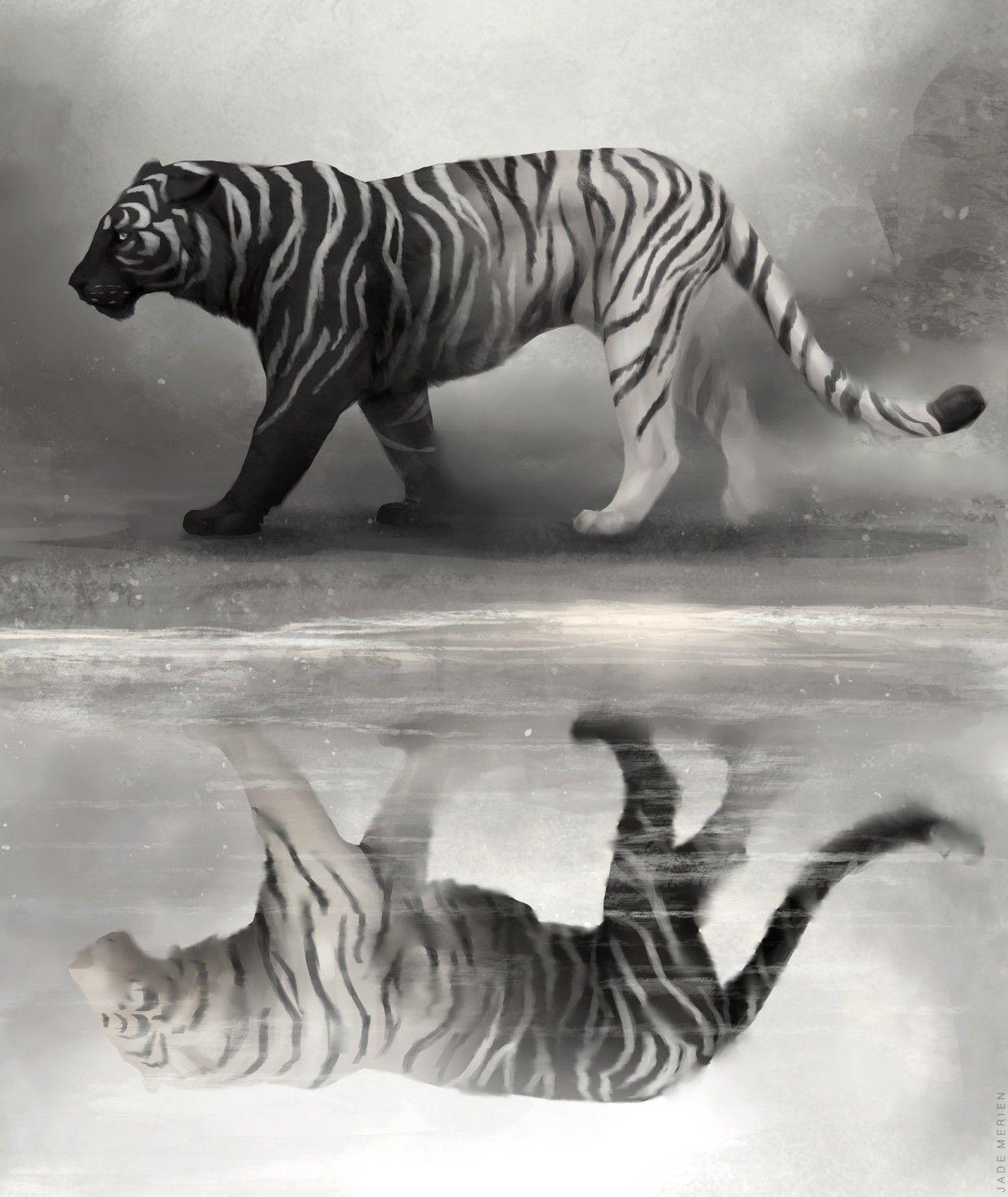 Pin by Shankar Shukla on Pencil drawings Tiger art