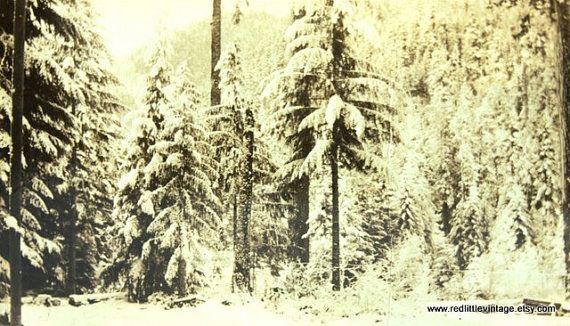 Original Wintery Print Vintage Sepia  by RedLittleVintage on Etsy, $12.00