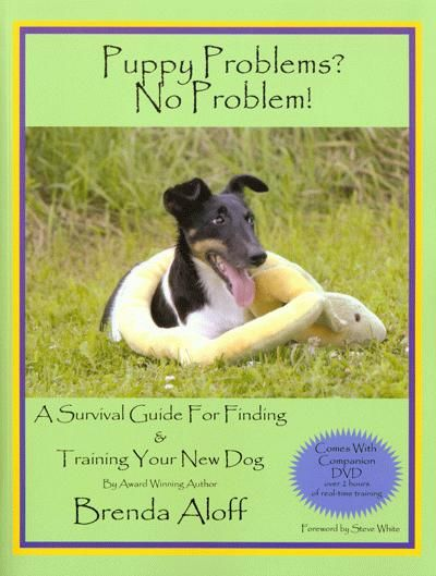 Puppy Problems No Problem A Survival Guide For Finding