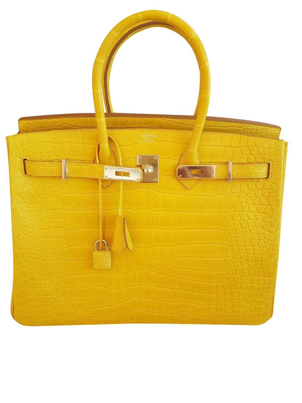 77a6aead95de Sac Hermès Birkin 30 Alligator Jaune Mimosa   Luxe for elle ...