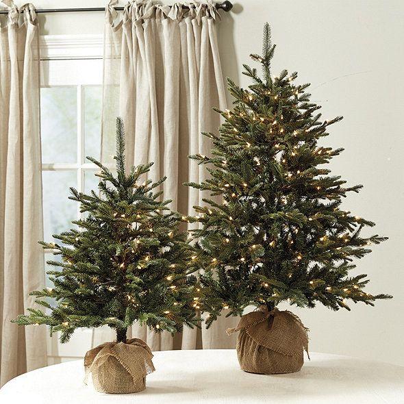 Suzanne Kasler Frasier Fir Tabletop Tree Ballard Designs Small Christmas Trees Mini Christmas Tree Christmas Decorations