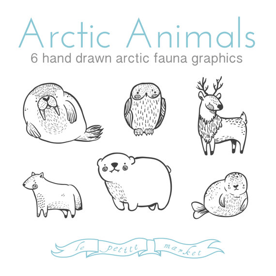 Cute Doodly Hand Drawn Arctic Animal Clipart Illustrations Set Walrus Seal Polar Bear Reindeer Snowy Owl Fox Digital Download