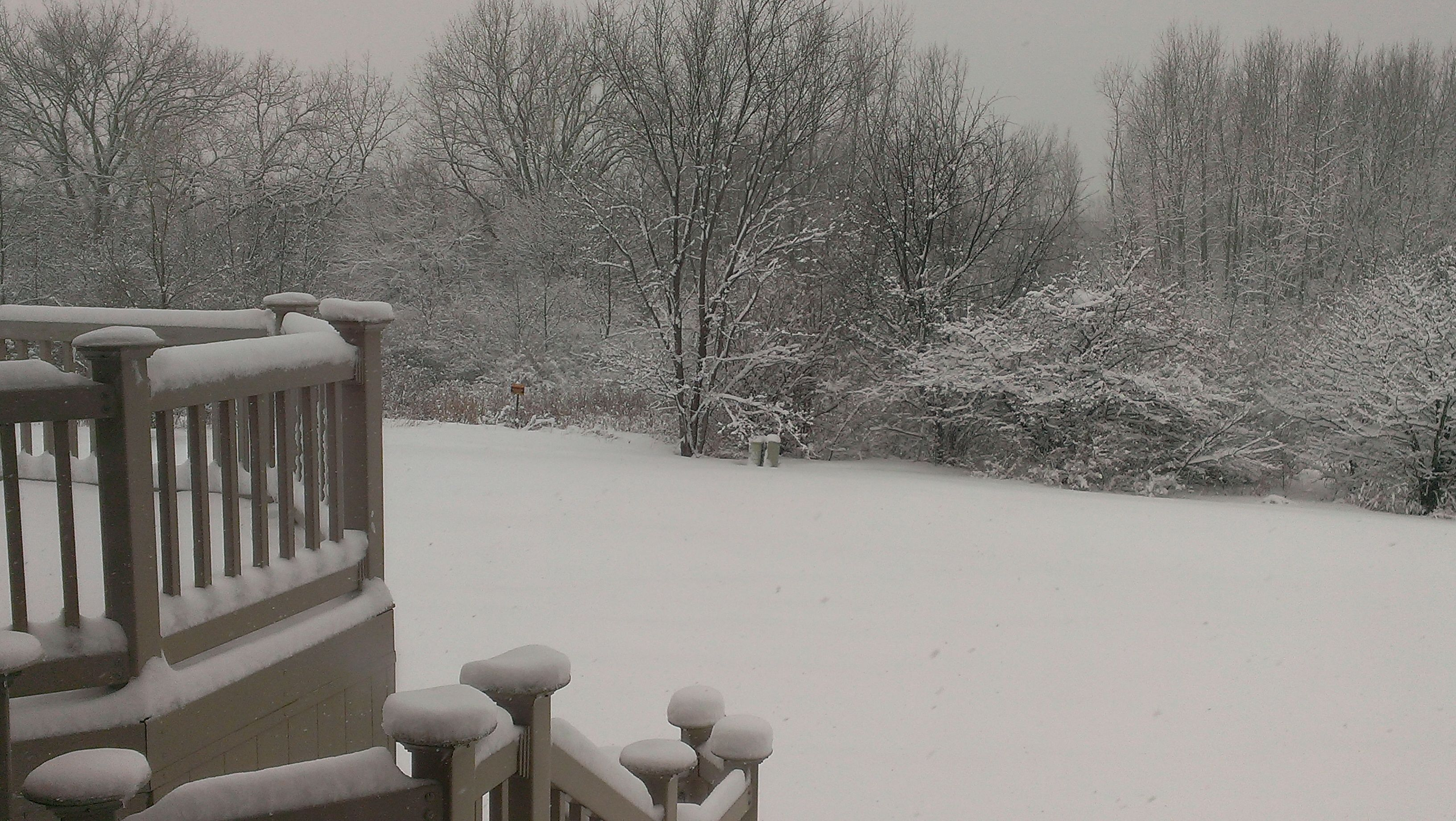 My back yard during the snow storm of 2014.