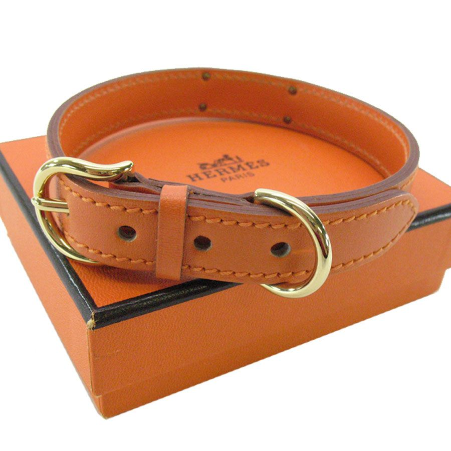 Hermes dog collar pampered pooches with images