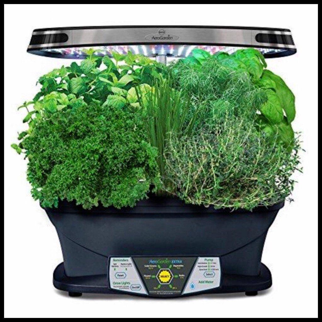 Gourmet Herb Seed Pod Kit W Led Indoor Vegetable 400 x 300