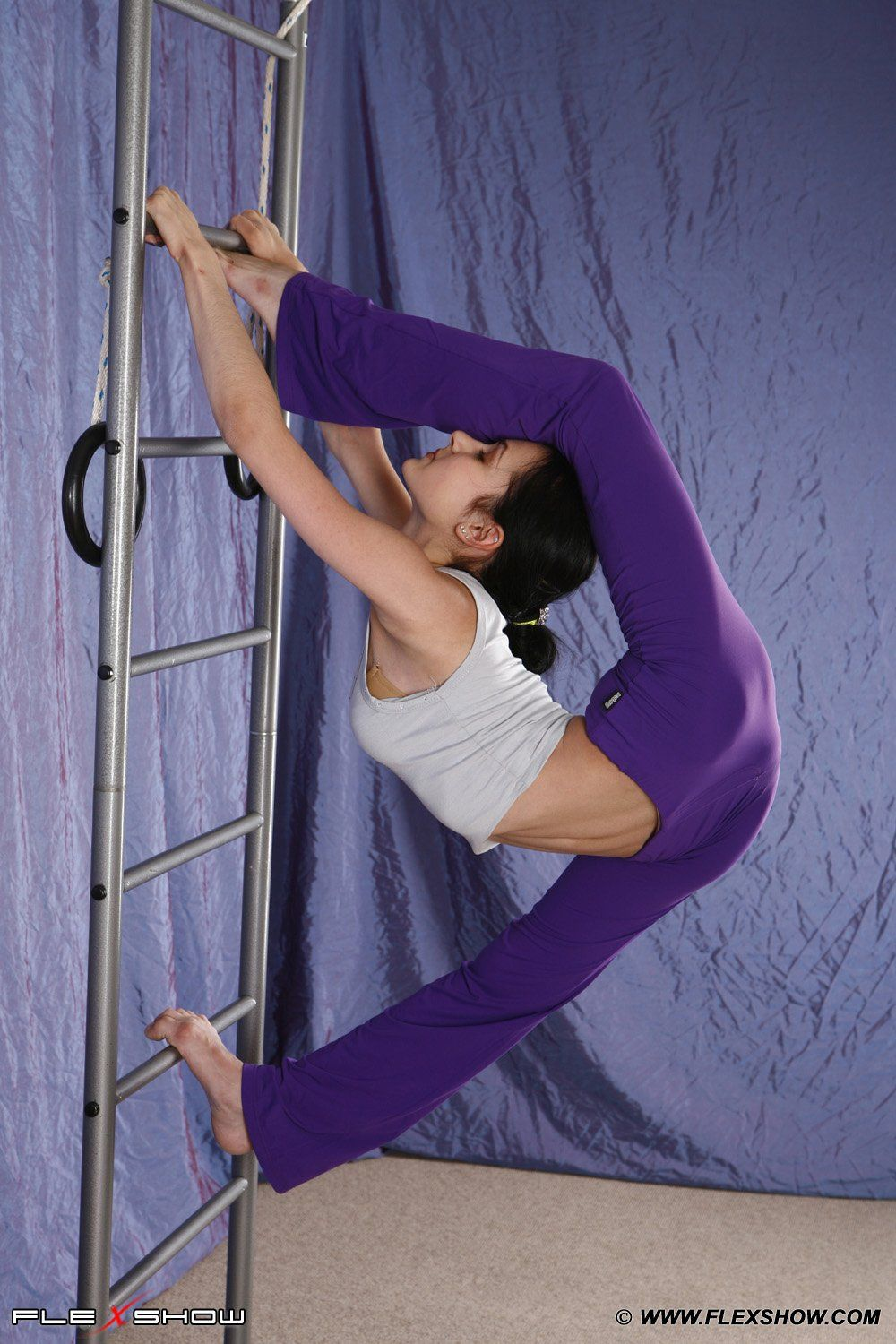 Contortionist Google Search Gymnastic Jungle